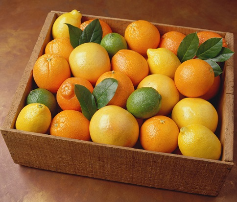Lemons-and-Oranges