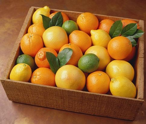 Lemons-and-Oranges