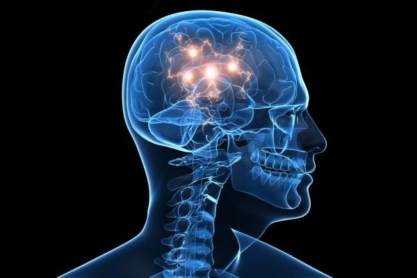 brain-stops-growing