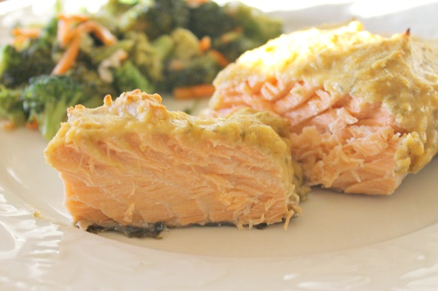 salmon-hummus